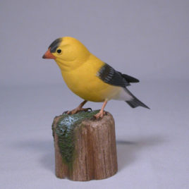 American Goldfinch #1(Male)