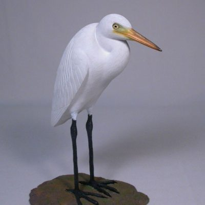 Other Water Birds