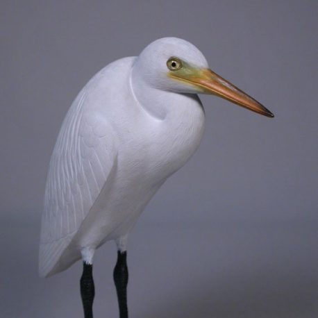 7-1/2 Great Egret