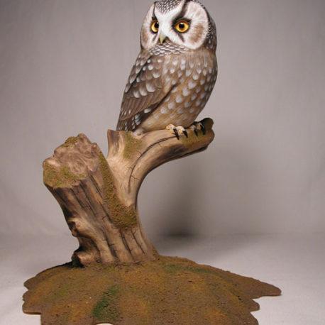 Life Sized Boreal Owl