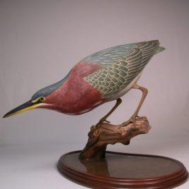 15″ Green Heron