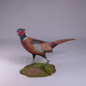 "10 1/2 "" Ring-necked Pheasant"