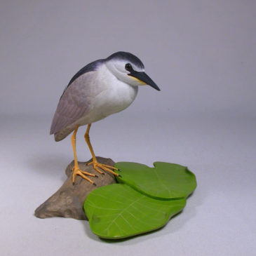 5-5/8″ Night Heron #2