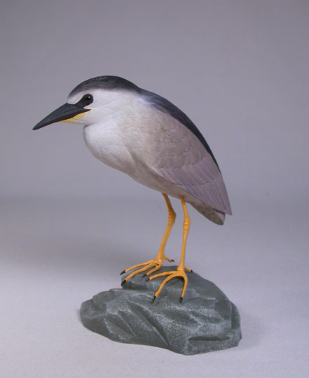 5-5/8″ Night Heron #1