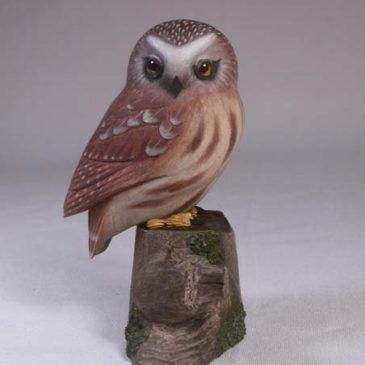3-3/4″ Saw-whet Owl