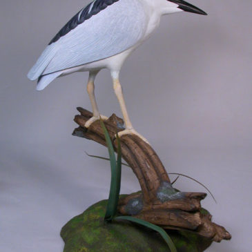 11″ Night Heron