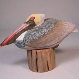 7-1/2 inches Pelican