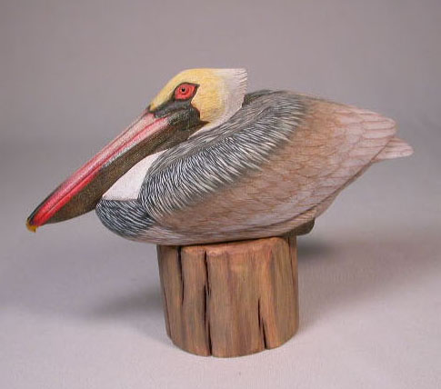 7 1/2″ Pelican