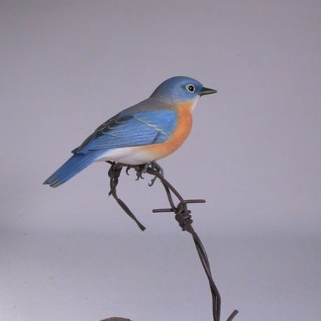 bluebird-f-wire1