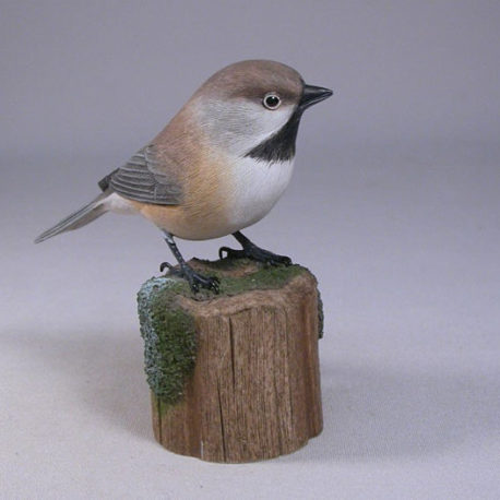 chickadee-boreal1