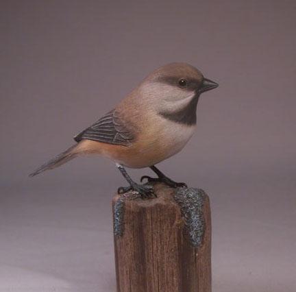 chickadee-grey1
