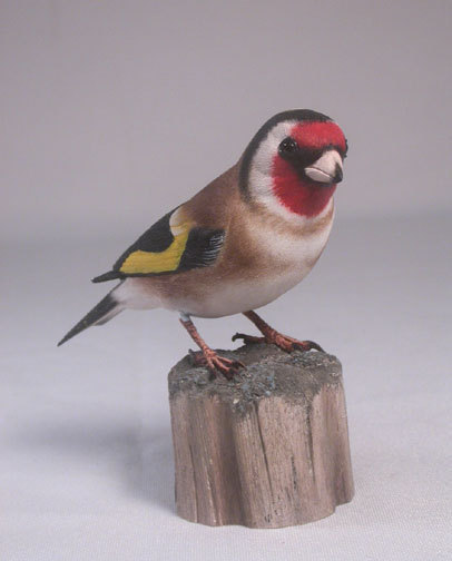 goldfinch-european1
