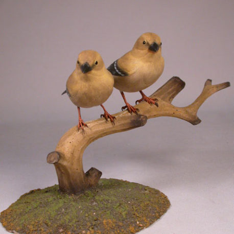 goldfinch-f2-1