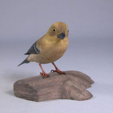 American Goldfinch #3 (Female)