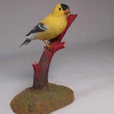 American Goldfinch #3 (Male)