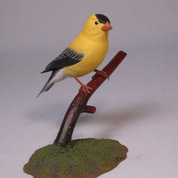 American Goldfinch #4