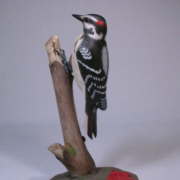 7-1/2″ Hairy Woodpecker