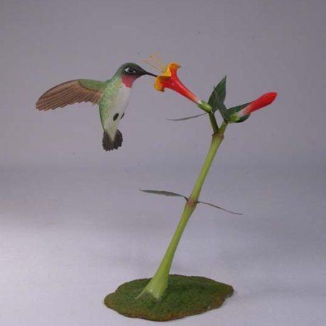 Open-Winged Ruby-throated Hummingbird #3