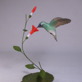 Open Winged White-eared Hummingbird #2