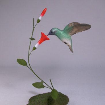 Open Winged White-eared Hummingbird #2
