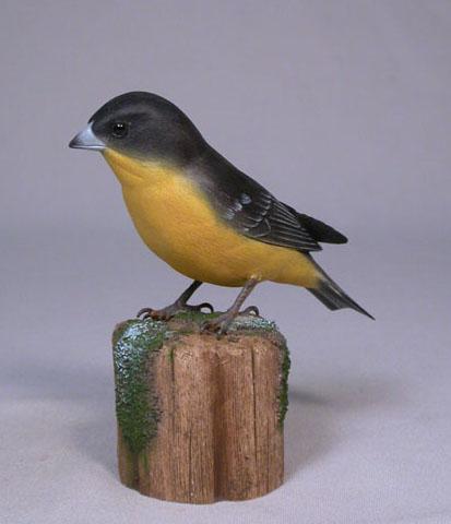 leassergoldfinch2