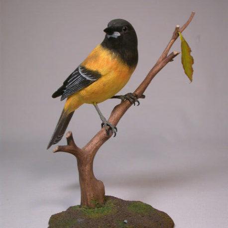oriole-audubon1