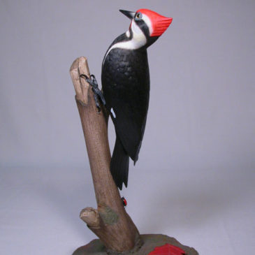 7-3/4″ Pileated Woodpecker