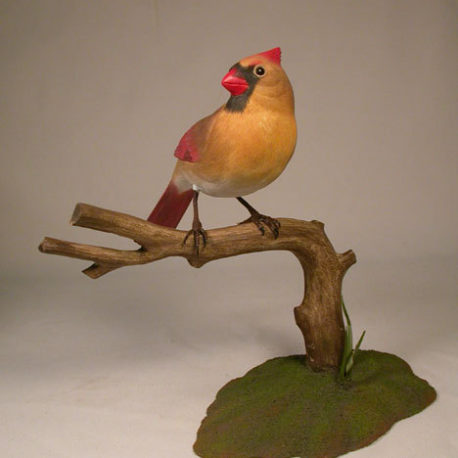 Cardinal-f1