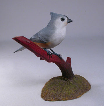 Tufted Titmouse#2 on branch