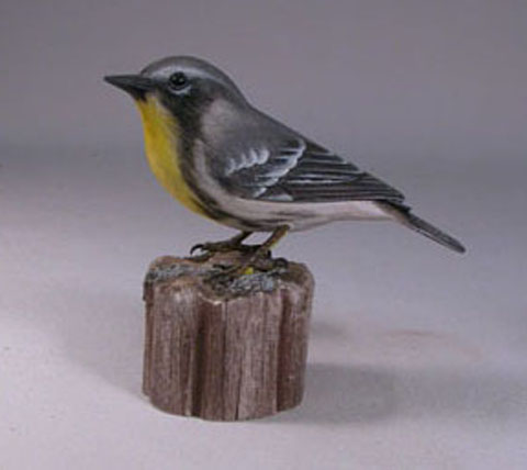 Yellow-throatedWarbler1