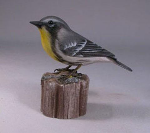 Yellow-throatedWarbler1