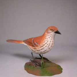 10″ Brown Thrasher