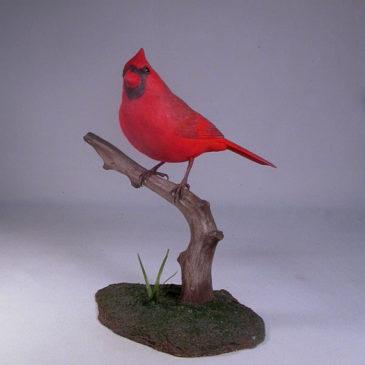 Life size 7″ Male Northern Cardinal #2