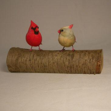 Mini male and female Cardinal #4