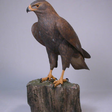 12 inch Golden Eagle