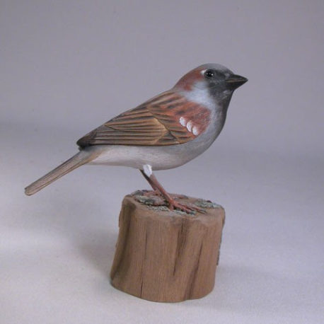 housesparrow1