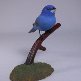 Indigo Bunting on branch #2