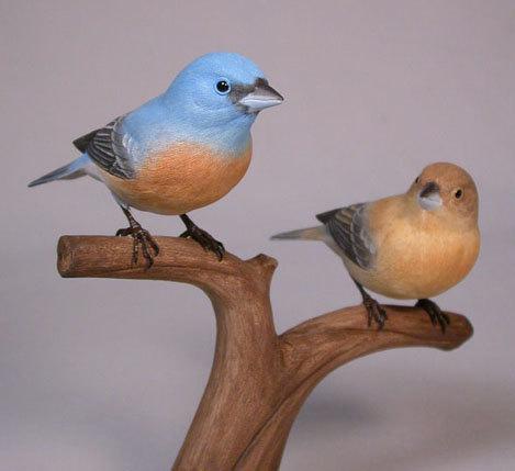 lazuli-pair1