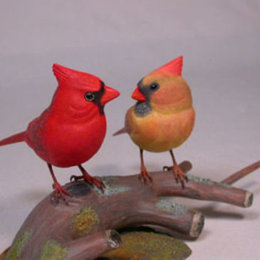 Mini male and female Cardinal #3