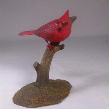 4-1/2 inch Male Cardinal #2