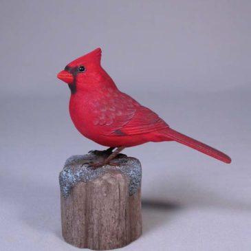 5″ male Cardinal #1