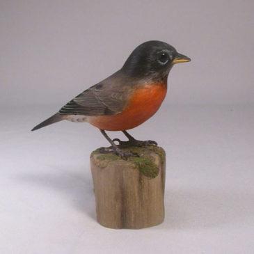 5″ American Robin