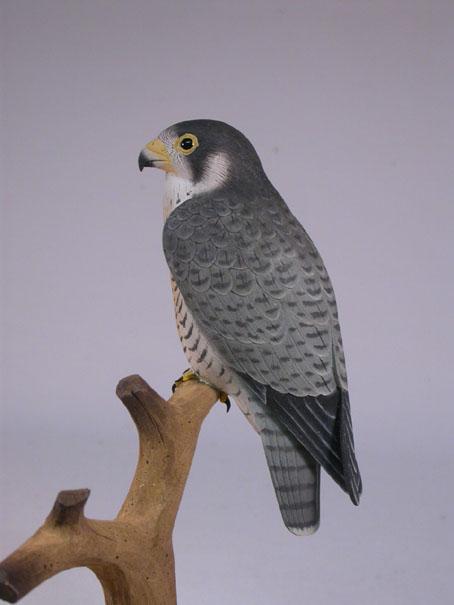 p-falcon-mini21