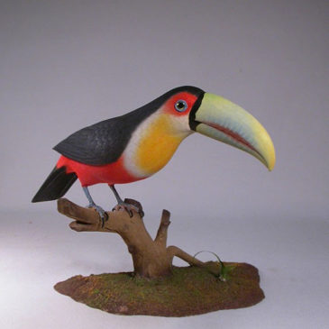 10 inches Red-breasted Toucan