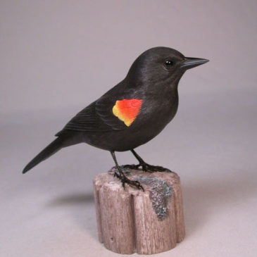 7″ Red-winged Blackbird #1