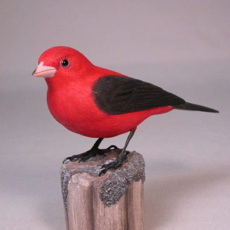 s-tanager1
