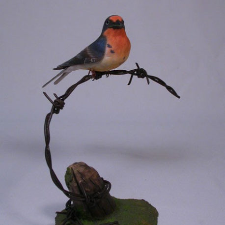 swallow-barn1