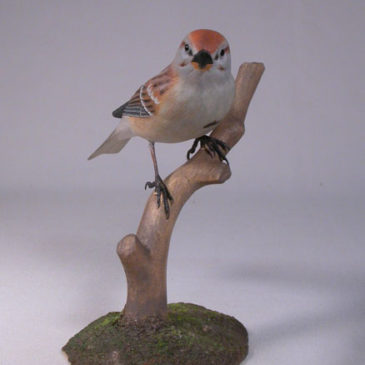 Tree Sparrow #2 on branch