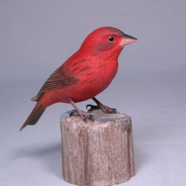 Red Bronze Canary