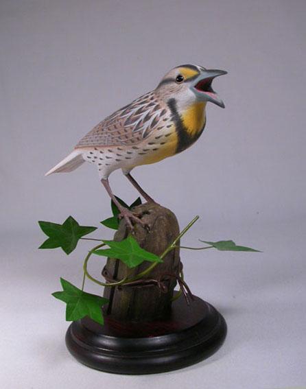 eastern-meadowlark-2
